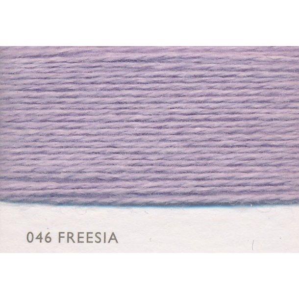 Coast Freesia